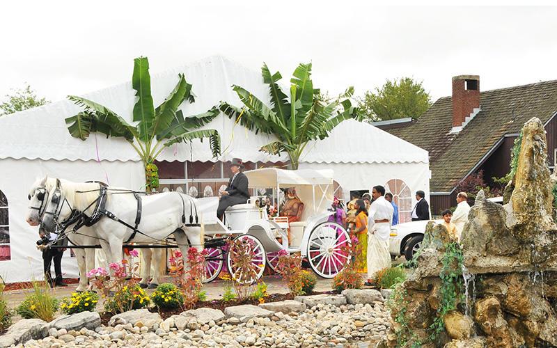 Foreign Wedding